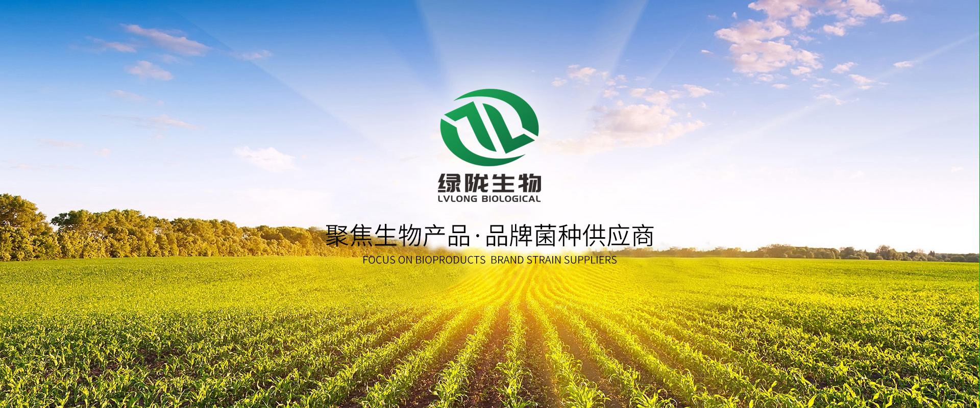 山东绿陇生物技术有限公司